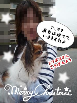 しょこちゃんP1330534