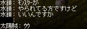 dotama8.jpg