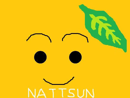 nattsun.jpg
