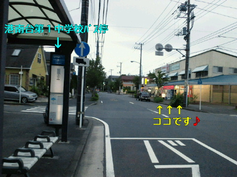 NEC_0174_20110831115417.jpg