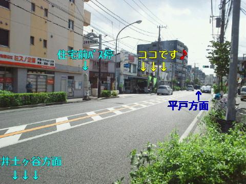 NEC_0307_20110913004320.jpg