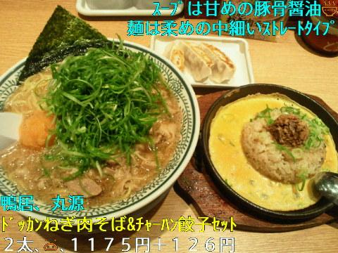 NEC_0373_20110919230751.jpg