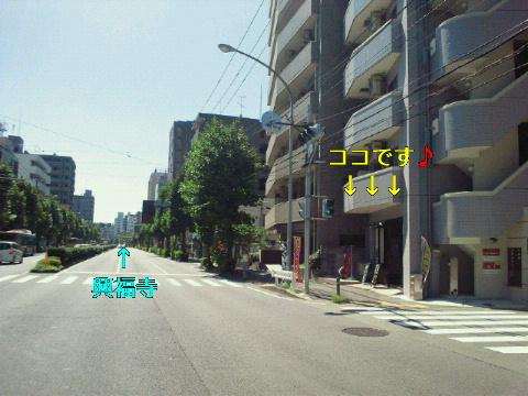NEC_0390_20110920133410.jpg