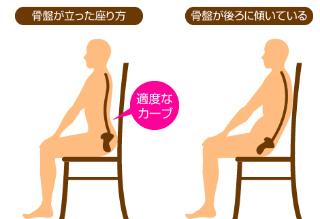 座るときは、骨盤を立てましょう。