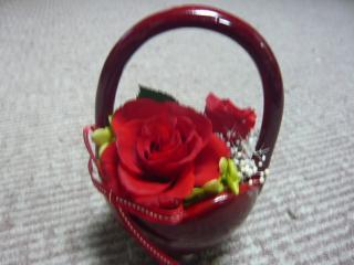 2011_0104_205531-P1030623.jpg