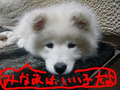 snap_minamimamami_201124205043.jpg