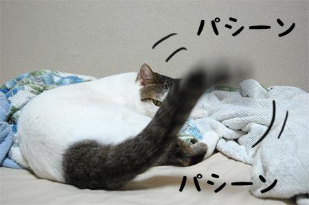 100813_ご機嫌斜め03