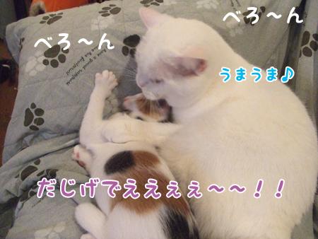 100824_ちはるとメメタ06