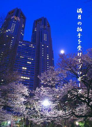 さくら(新宿中央公園夜桜)満月の