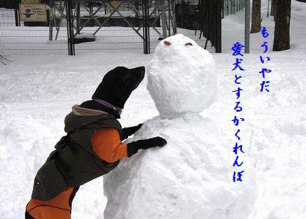 U1-L愛犬とかくれんぼ
