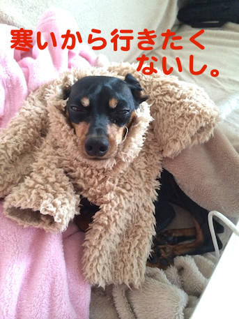 20130108-1.png