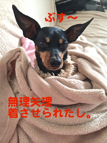 20130108-2.png