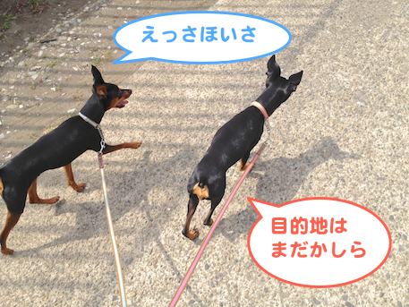 20130609-4.png