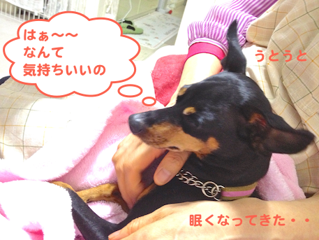 20130613.png