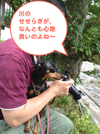20130623-4.png