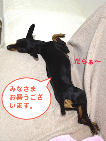 20130711.png