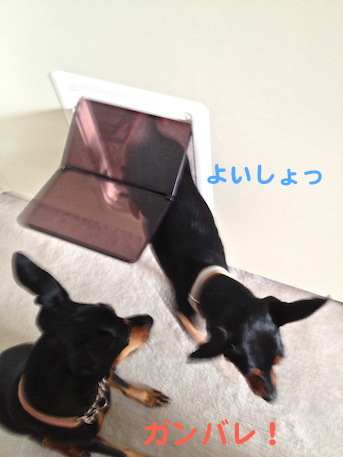 20130722-2.png