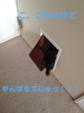 20130722-5.png