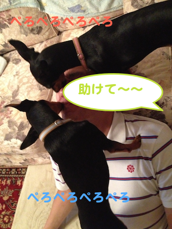 20130722-8.png