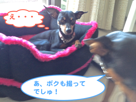 20130724-1.png
