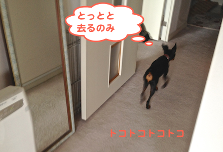 20130724-6.png