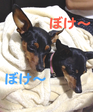 20130728-9.png