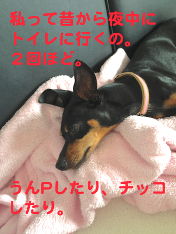 20130731-1.png