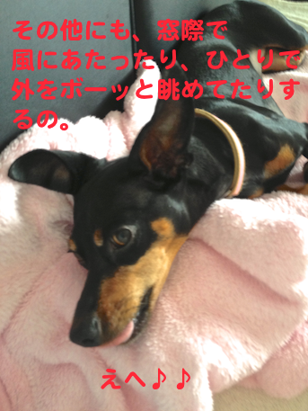 20130731-2.png