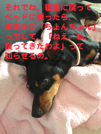 20130731-3.png