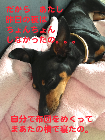 20130731-4.png