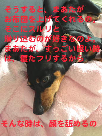 20130731-5.png