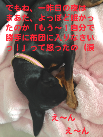 20130731-6.png