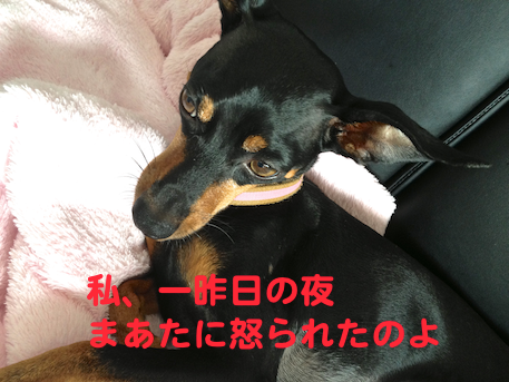 20130731.png