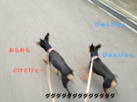 20130809-5.png