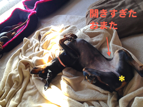 20130830-1.png