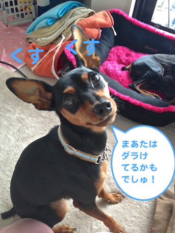 20130911-3.png