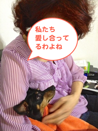 20130922.png