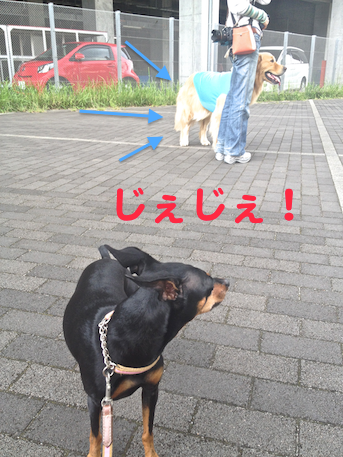 20130925-2.png