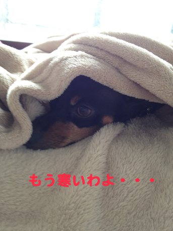 20130930-3.png
