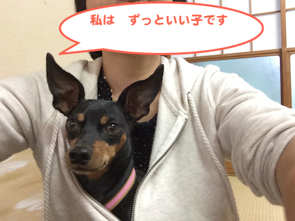 20131017-9.png