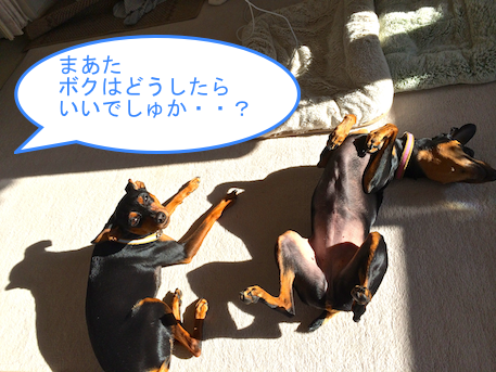 20131030-2.png