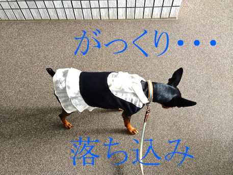20131108-1.png