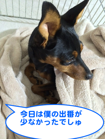 20131229-4.png