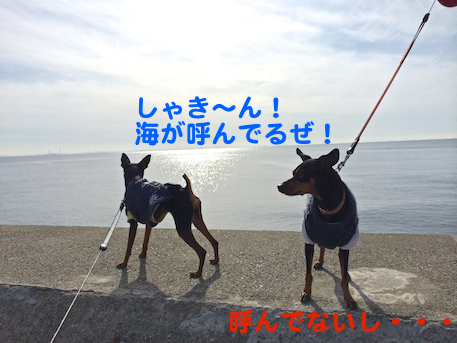 20140108-4.png