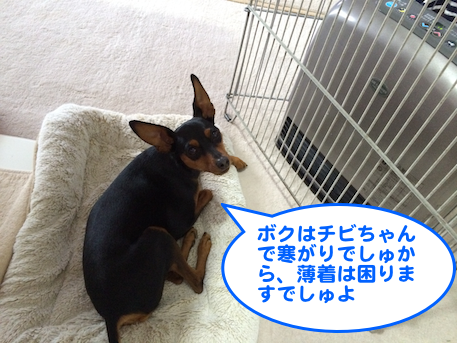 20140121-2.png