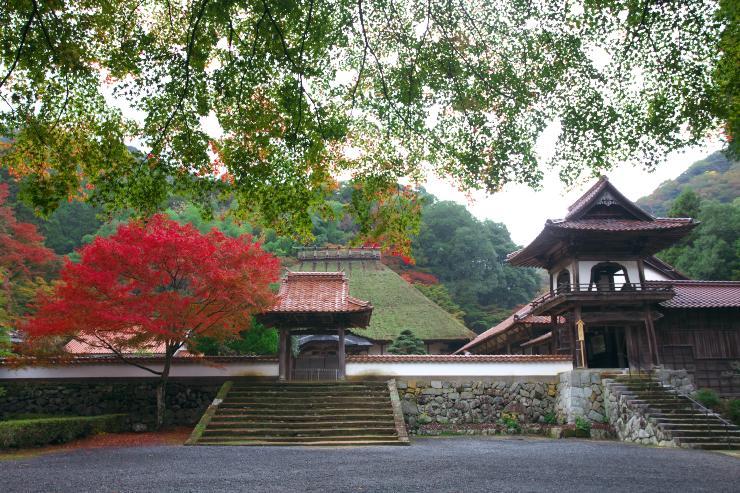 永明寺の紅葉