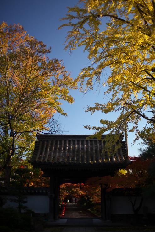 山口 龍福寺