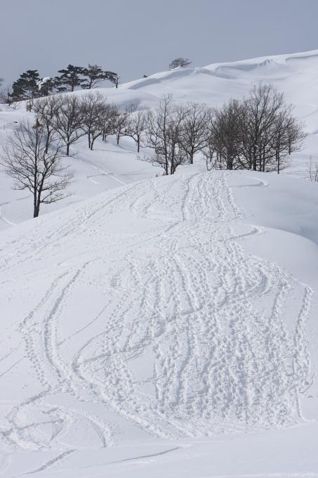 登山スキー