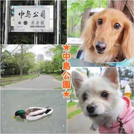 ~中島公園~