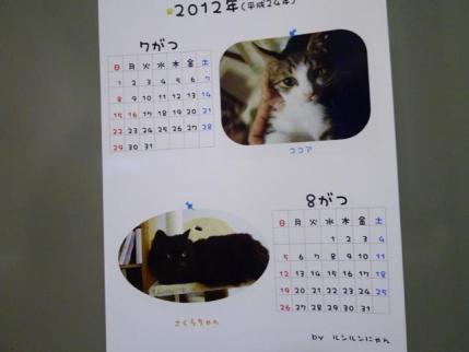 20111201.jpg